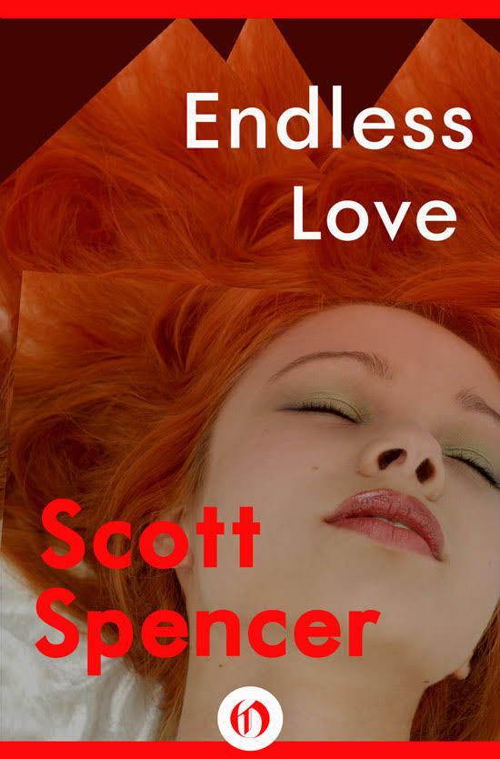 Endless Love cover.jpg