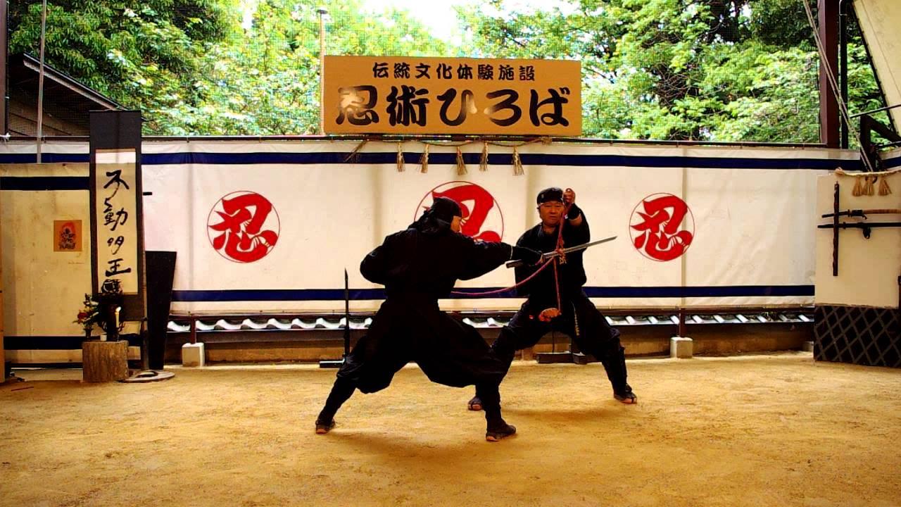 iga ninja 2